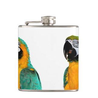Petaca retrato colorido del pájaro del loro del macaw del