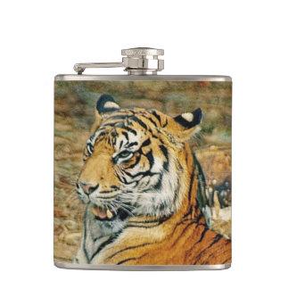 Petaca Tigre hermoso