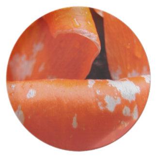 Pétalos anaranjados de la amapola plato
