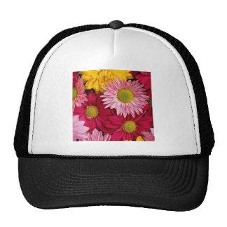 Pétalos coloridos de la flor de las margaritas de  gorras de camionero