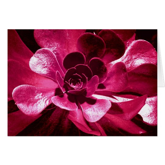 Pétalos de las rosas fuertes tarjeta de felicitación