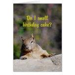 Petición de feliz cumpleaños de la ardilla tarjetón