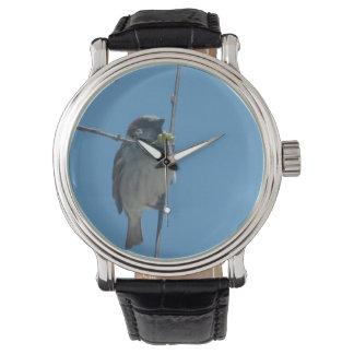 Petirrojo - reloj