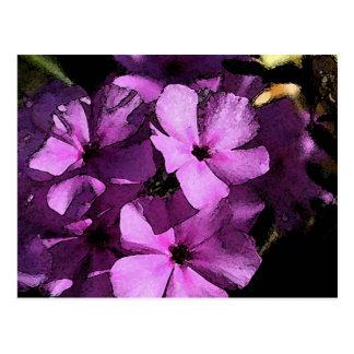 Phlox púrpura salvaje de la escena en Tejas del su Postal