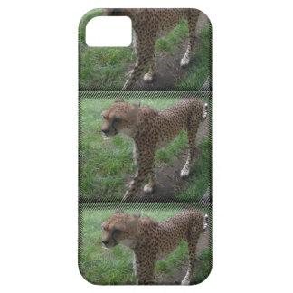 Phonecover del guepardo funda para iPhone SE/5/5s