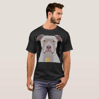 Pi y Pitbull en la misma camisa para los amantes