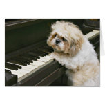 pianista tarjeta de felicitación