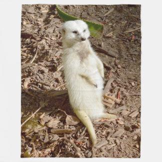 Piel blanca Meerkat, manta grande del paño grueso