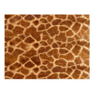 Piel de la jirafa postal