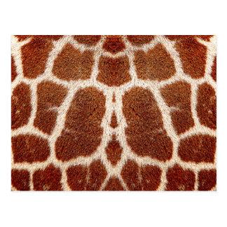 Piel original de la jirafa tarjeta postal
