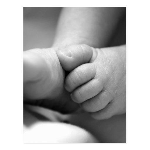 pies recién nacidos de los bebés postales