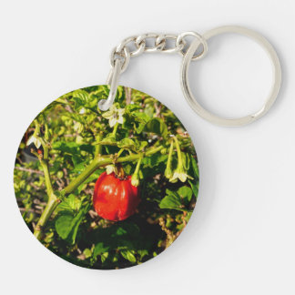 pimienta roja del solo habanero en planta llavero redondo acrílico a doble cara