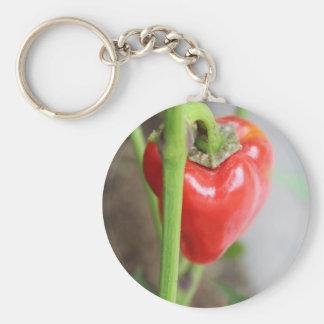 Pimienta roja dulce llavero personalizado