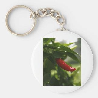 Pimienta roja en la lluvia llaveros personalizados