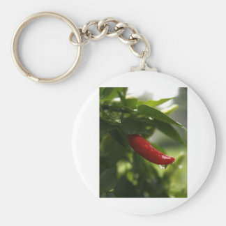 Pimienta roja en la lluvia llavero redondo tipo chapa