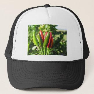Pimientas rojas y verdes que cuelgan en la planta gorra de camionero