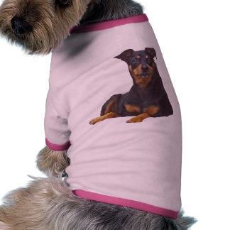 pincher negro y moreno del miniatuur- camisa de perro