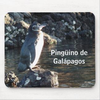 Pinguino de las Islas Galápagos Alfombrilla De Ratón