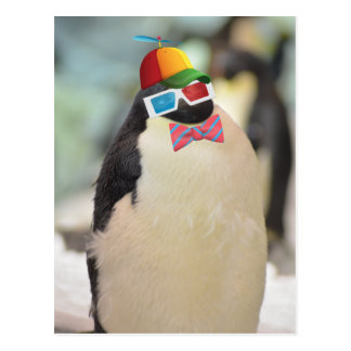 pingüino poco gordo y mullido postal