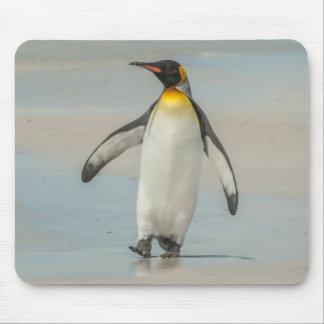 Pingüino que camina en la playa alfombrilla de ratón