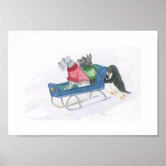 Pingüino y Terrier expresos Póster