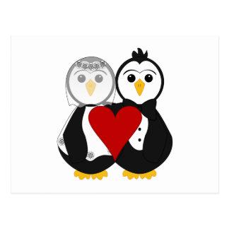 Pingüinos casados en amor postal