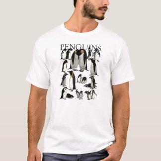 Pingüinos de la camisa del mundo