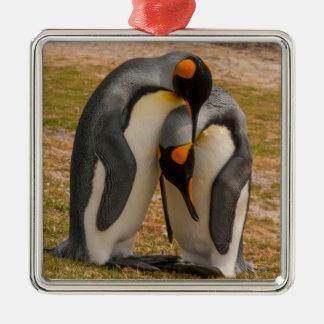 Pingüinos de rey que acarician, Malvinas Adorno Navideño Cuadrado De Metal