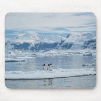 Pingüinos en un iceberg alfombrilla de ratón