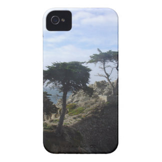 Pino solo Case-Mate iPhone 4 protector