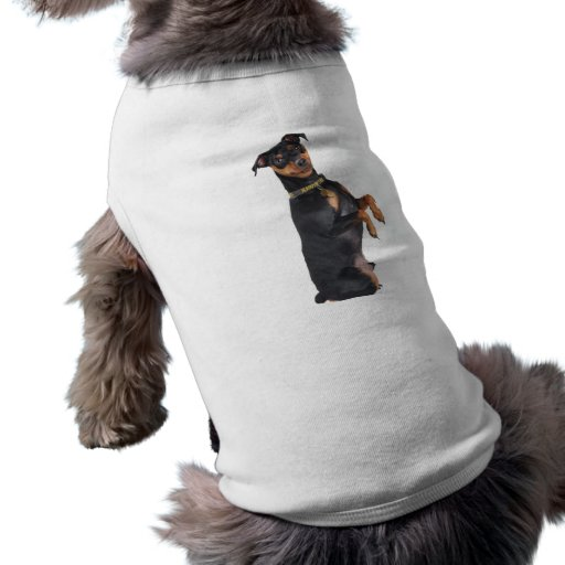 Pinscher miniatura feliz camisa de mascota