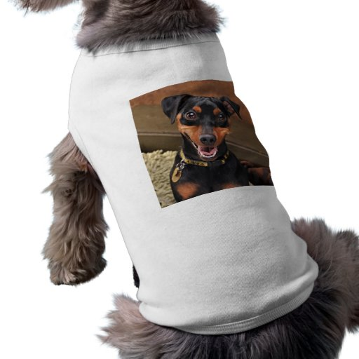 Pinscher miniatura feliz camisetas de perrito