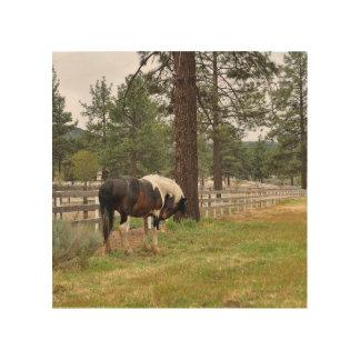 Pinte el arte de madera del caballo