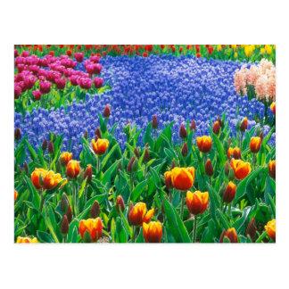 Pintura al óleo de un jardín inglés típico de la postales