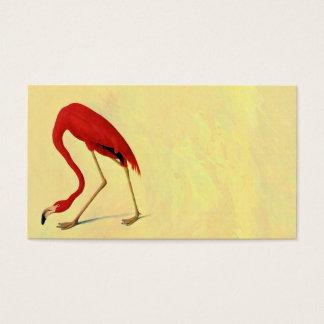 Pintura americana del flamenco de Audubon Tarjeta De Negocios