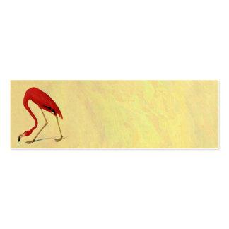 Pintura americana del flamenco de Audubon Tarjetas De Visita Mini