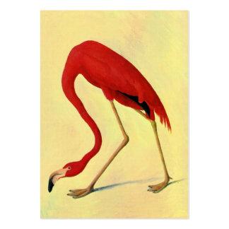 Pintura americana del flamenco de Audubon Tarjetas De Visita Grandes