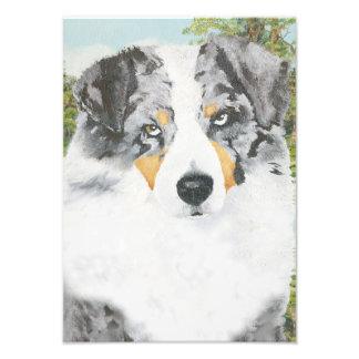 Pintura australiana del retrato del perro de fotografia