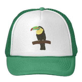 Pintura colorida de Toucan por el gorra de Cheryls