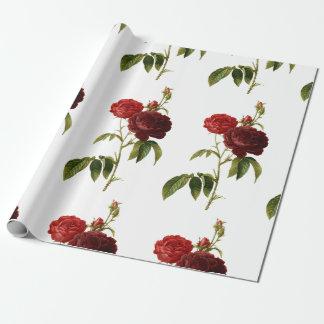 Pintura de color rojo oscuro de los rosas del papel de regalo