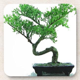 pintura del bonsai-árbol portavasos