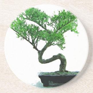 pintura del bonsai-árbol posavasos de arenisca