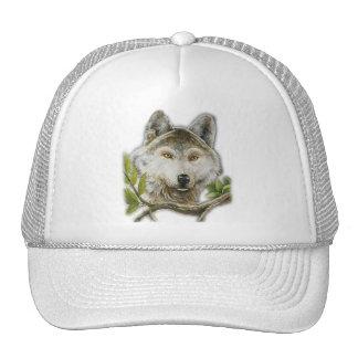 Pintura del lobo con apenas la cara gorra