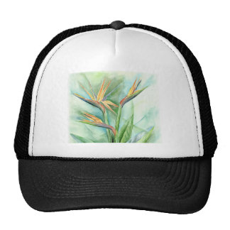 Pintura tropical de la ave del paraíso de la flor  gorras de camionero