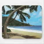 Pintura tropical de la playa alfombrilla de ratón