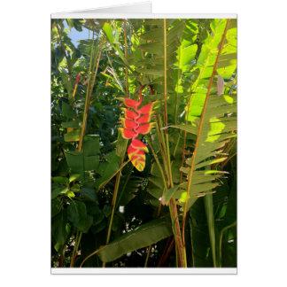 Pinza de langosta hawaiana del estilo de las tarjetón