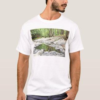 Piscina reflexiva - Landscape.jpg Camiseta