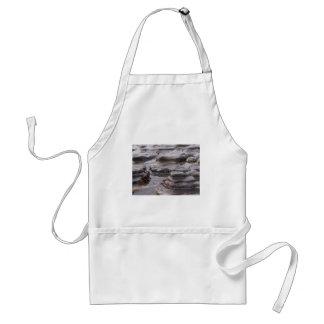 Piscinas de la marea delantal