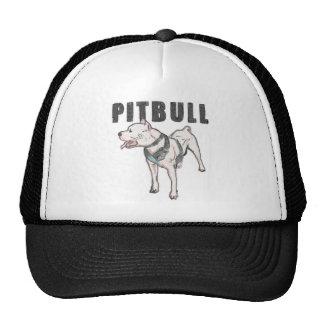 pitbull [1] gorra