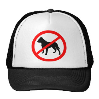 pitbull ban.png gorro de camionero